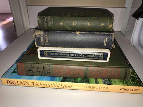 European Interest Books Lot