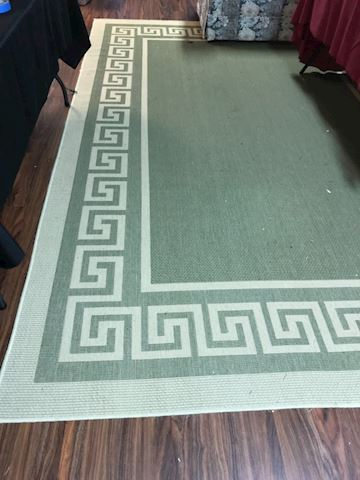 Indoor/outdoor area rug, approx 8' X 12'