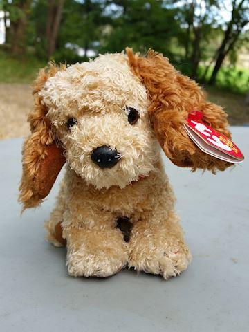 Houston beanie baby dog TY tag