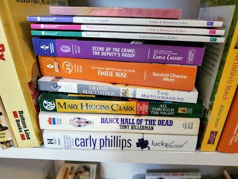 28 Book Lot