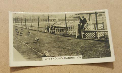 1930's Real Photo Greyhound Racing Tobacco Card