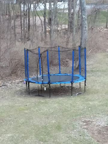 Outdoor Enclosed Trampoline