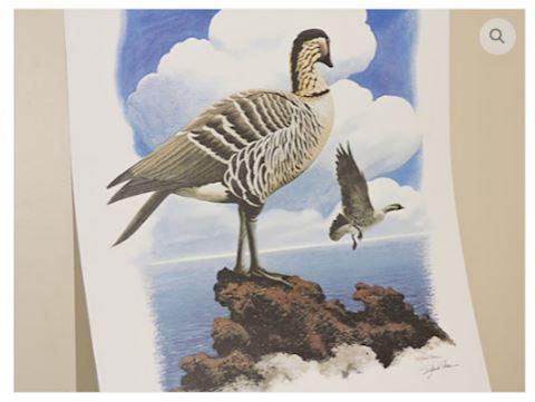 Nene Wildlife Art Signed Print by Richard Sloan