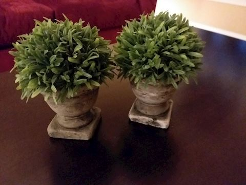 Tabletop Faux Plant Decor, Set of 2