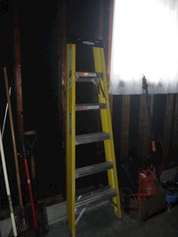 6' Werner Ladder FSA06