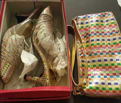 Brand New Purse & Shoes Matching Set Size 11