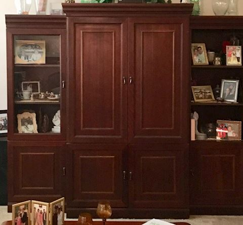 Entertainment Center with Shelving
