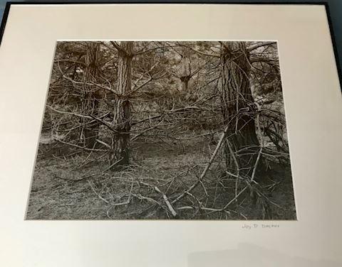 2 Jay Decker Framed Photos