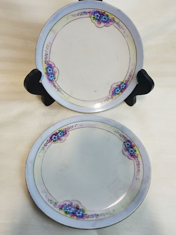 Set of 2 noritake hand painted japan floral plates