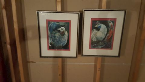 456102 Set of 2 Framed Artwork of Asian Birds