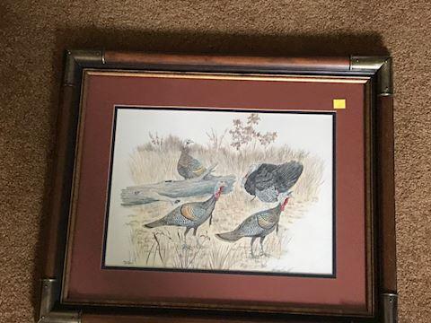 Wild Turkey print