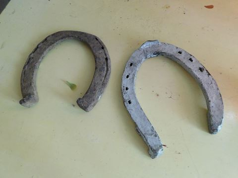 049 Pair of Horseshoes