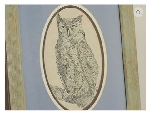 Owl Etching by J.T. Albert of Tennessee 1976