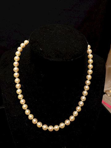 Champagne Pearl's with 14k gold