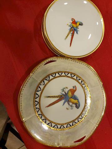 Macaw plates