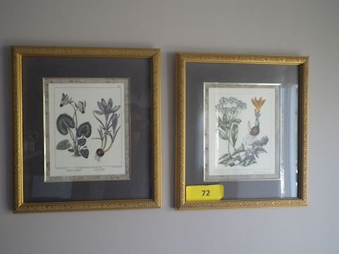 Lot #72 -Two Pieces of Framed Art (K)