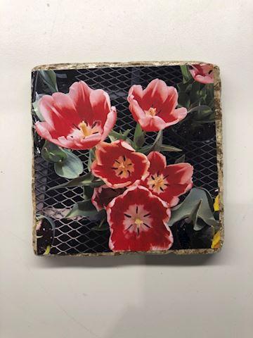 Tulip Tile Coaster
