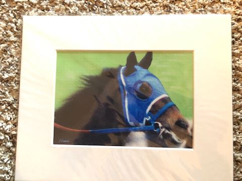 Race horse matted print