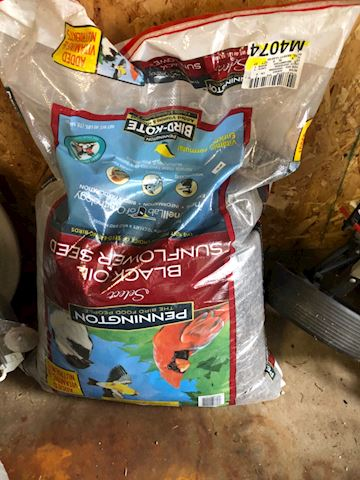 Pennington Black Oil Sunflower Seed