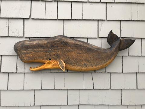 Left Facing Large Black Sperm Whale