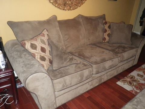 Olive Colored Sofa with Brown Trim