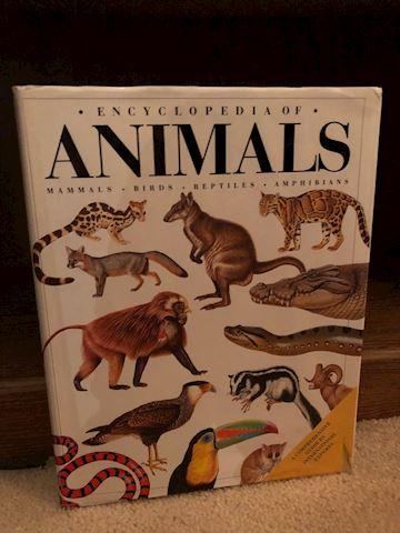 Mammals & Animals Books - 3 Total