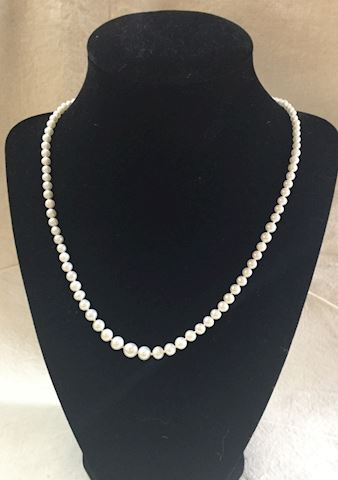 Freshwater pearls 14kt Gold Necklace