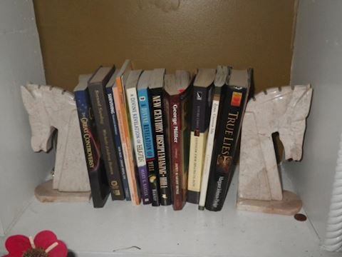 Horse Bookends and Lot of Books