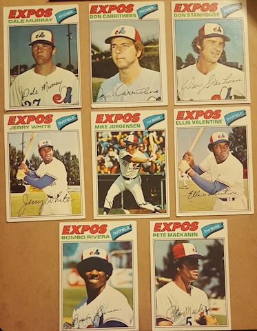 8 Vintage 1977 Montreal Expos Baseball Cards