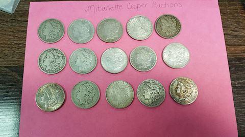 Estate Collection of 15 Silver Morgan Dollars