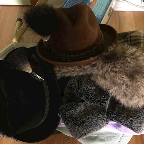 Men's Alpine Hats