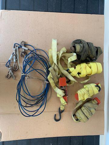 Misc Tie Downs, Pet cable Lot #203