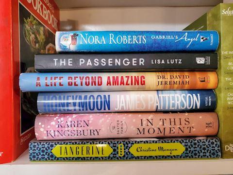 17 Book Lot