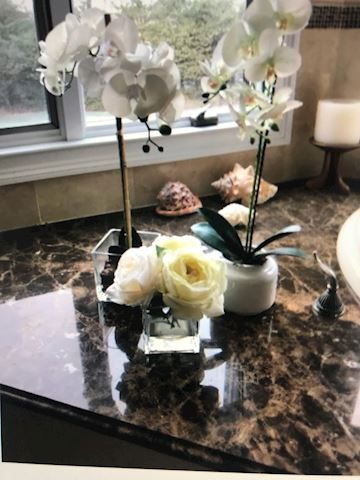 two orchid plants that look real
