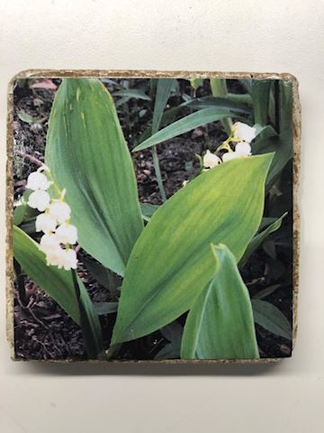Lily of the Valley Tile Coaster