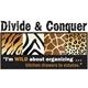 Divide & Conquer Logo