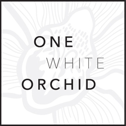 One White Orchid
