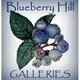 Blueberry Hill Galleries Logo