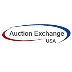 Auction Exchange USA Logo
