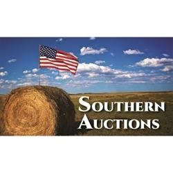 Southern Auctions LLC Logo