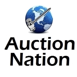 Auction Nation Logo