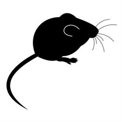 Country Mouse Antiques Logo