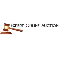 Expert Online Auction
