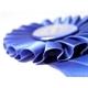 Blue Ribbon Auction Services Logo