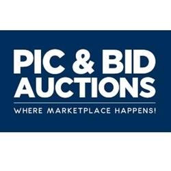 Pic & Bid Auctions LLC Logo