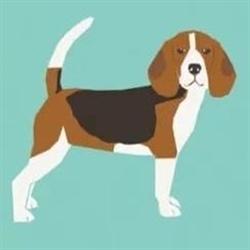 The Blue Beagle Nc