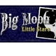 Big Moon Little Stars Logo