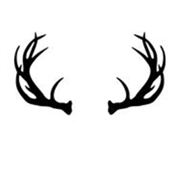 Antler Estate & Liquidation Sales