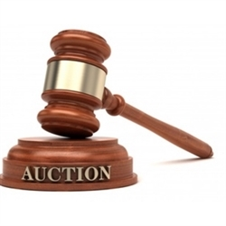 Mitanette Cooper Auctions Logo