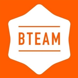 B-team Liquidations Logo